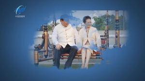 【视频】赞美彭丽媛着旗袍歌曲4'版