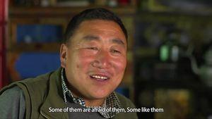 Tibet Short Documentaries—Farm inn with bees