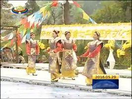 米林黄牡丹节:藏药之乡 展示多彩文化魅力