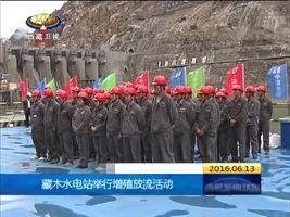 [西藏新闻联播]藏木水电站举行增殖放流活动