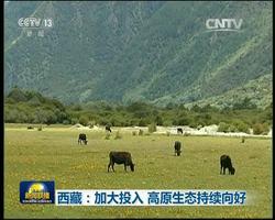 西藏:加大投入 高原生态持续向好