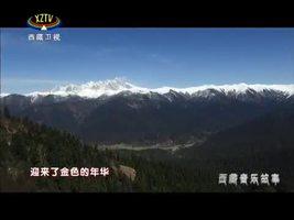 《拥抱太阳》西藏音乐故事