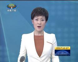 齐扎拉:着力打造绿色工业示范园区 实现藏青两省区互惠共赢
