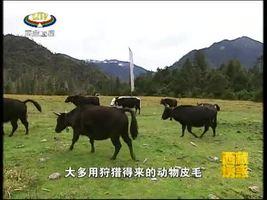 [西藏诱惑]珞巴族服饰文化