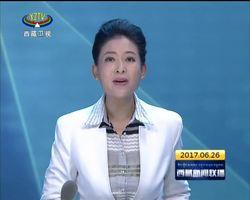 西藏自治区政府与水利部赴藏调研组座谈