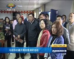 马培华在藏开展视察调研活动