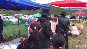 [视频] 见识了藏区的登秋节 怀疑自己过的是假人生