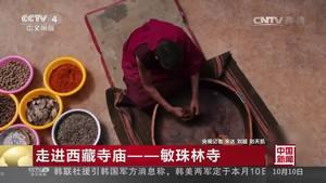 [走进西藏寺庙]敏珠林寺