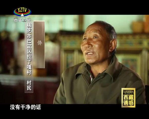 [西藏诱惑]《尼洋河》之《绿水青山》