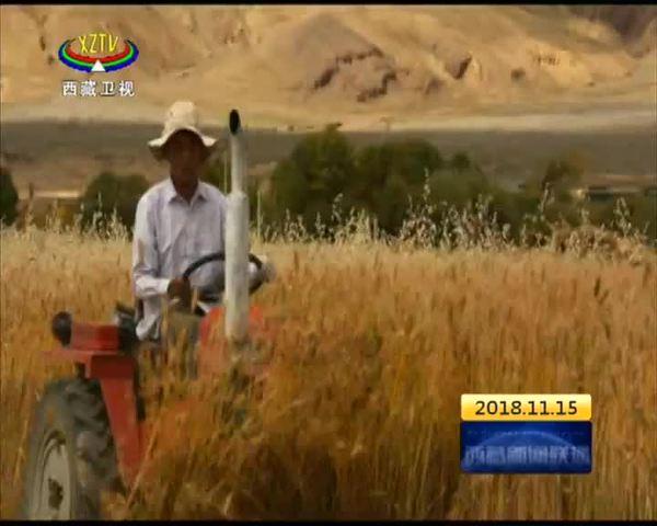 西藏农科部门发挥优势助力脱贫攻坚