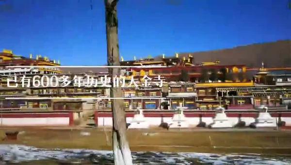 600多年历史的大金寺
