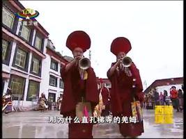 [西藏诱惑]直孔梯寺介绍