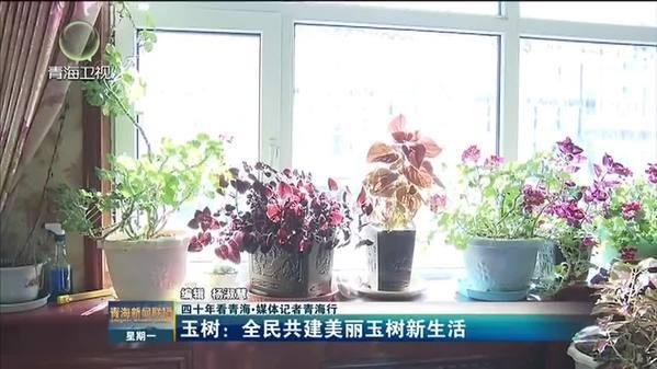 青海省玉树州:全民共建美丽玉树新生活