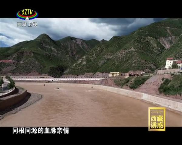 【西藏诱惑】《守望卡若》之《悠远回响》