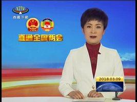 齐扎拉参加西藏代表团审议时强调 在新时代谱写好中华民族伟大复兴中国梦的西藏篇章