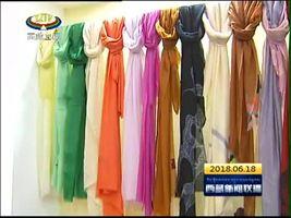 西藏名优特色产品畅销南博会