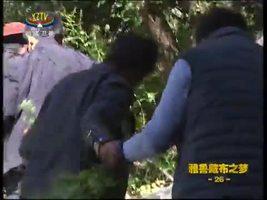 [西藏诱惑]探访达古村