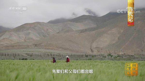《中国影像方志》西藏江孜篇
