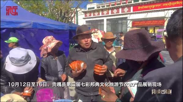 种类繁多,特色浓郁  西藏山南贡嘎县农牧产品展销会现场