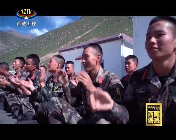 《西藏诱惑》 高原上的橐吾花