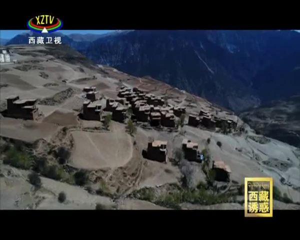 《西藏诱惑》走向幸福