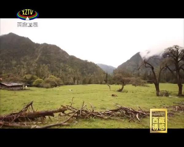 《西藏诱惑》又见川藏线 路见大美西藏