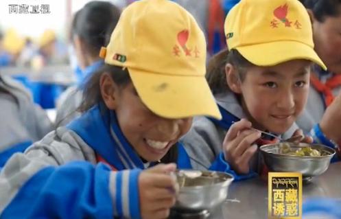 《西藏诱惑》教育之花