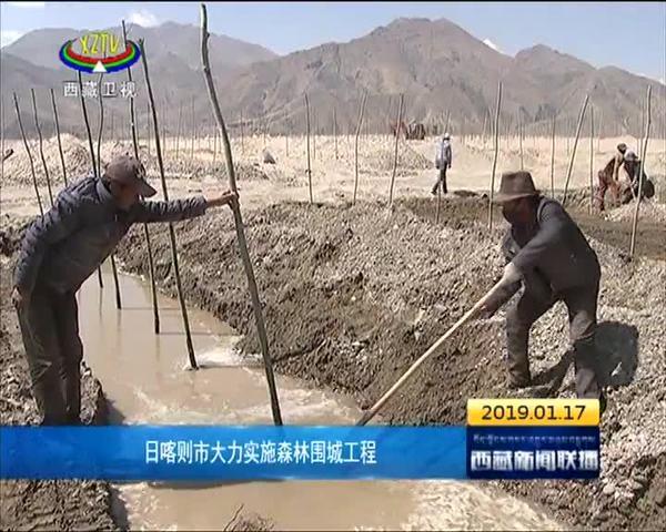 西藏日喀则市大力实施森林围城工程