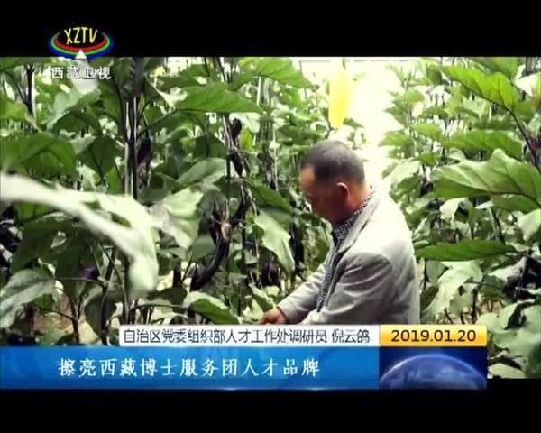 """第18批援藏博士服务团:""""智""""留西藏 """"慧""""洒希望"""