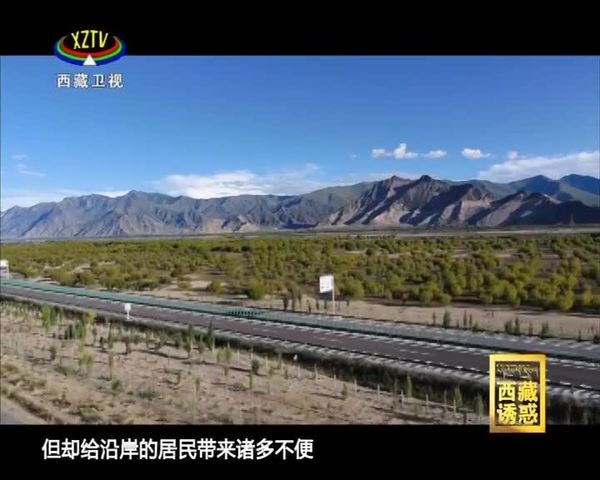 《西藏诱惑》绿色雅江的希望