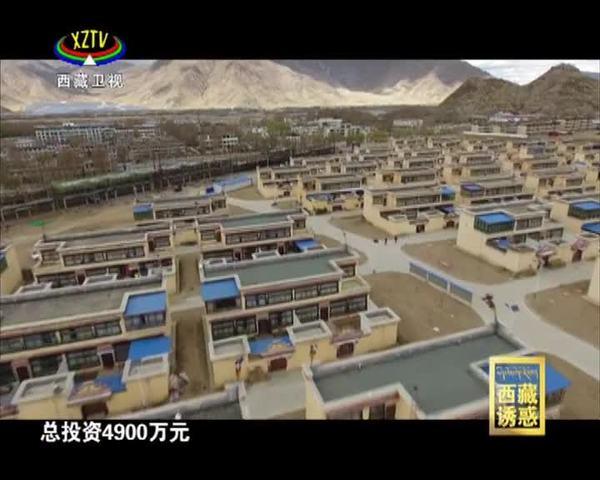《西藏诱惑》幸福新村的幸福事