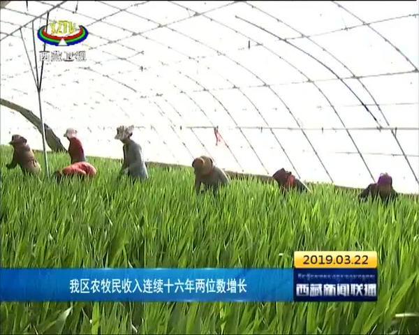 西藏农牧民收入连续十六年两位数增长