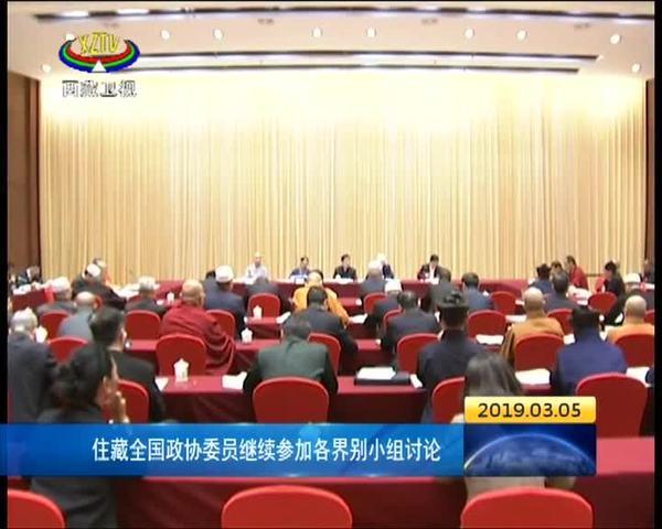 住藏全國政協委員繼續參加各界別小組討論