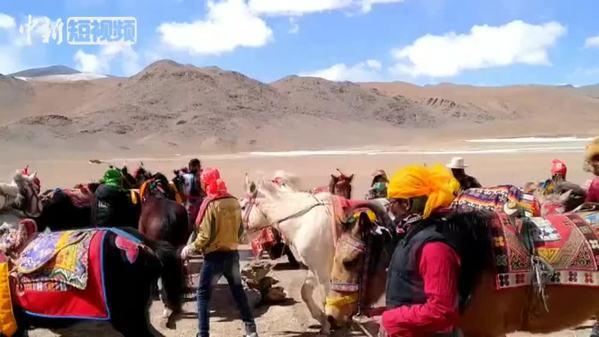 """草原开春 西藏藏北牧民自发举办""""最早""""赛马节"""