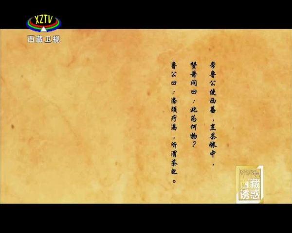 《西藏诱惑》金城公主(下集)