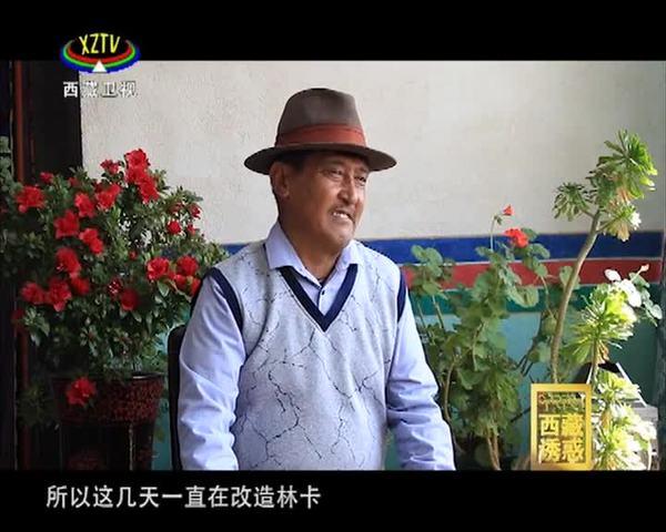 《西藏诱惑》 春天里的维巴