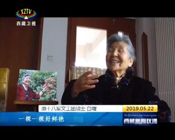 永远和西藏人民在一起——谭冠三将军与西藏的不解情缘(下)
