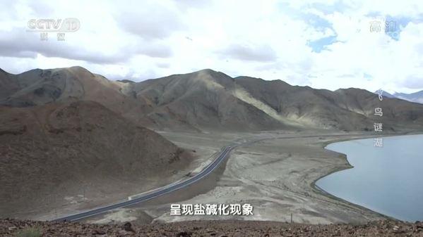《地理中国》西藏阿里秘境·飞鸟谜湖