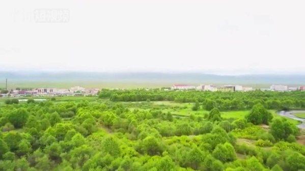 """青藏高原沙漠边缘300多公里的""""绿色长廊"""""""