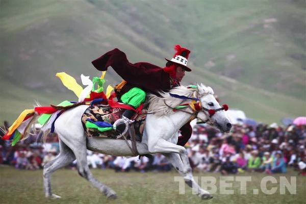 听,见雪域•有料丨草原上的赛马会