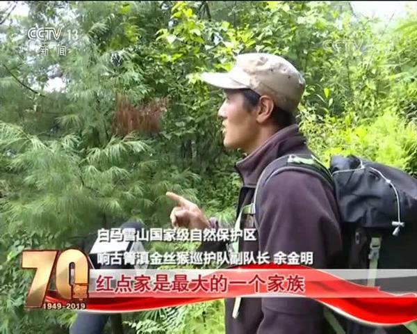 """【共和国发展成就巡礼·云南】白马雪山""""护猴人"""""""