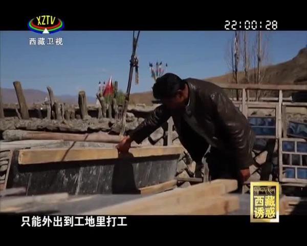 《西藏诱惑》改革开放同龄人