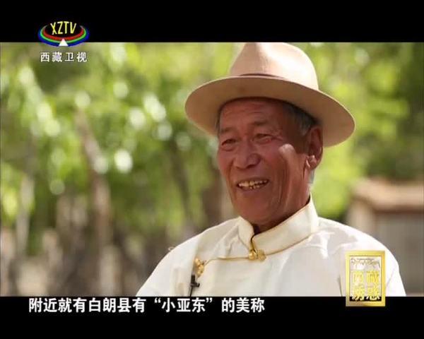《西藏诱惑》染绿荒山新愚公