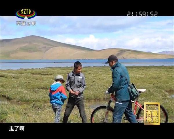 《西藏诱惑》坚守在世界之巅的邮递员