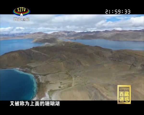 《西藏诱惑》绿水青山致富路