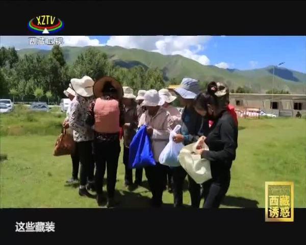 《西藏诱惑》西藏人的新林卡