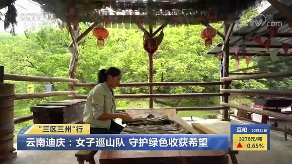 """【""""三区三州""""行】云南迪庆:女子巡山队 守护绿色收获希望"""