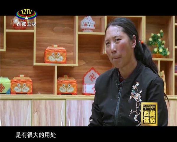《西藏诱惑》驻村记忆