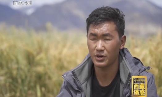 《西藏诱惑》扎根土地的创业梦