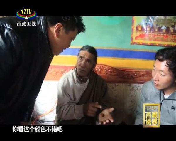 《西藏诱惑》旺多的创业之路